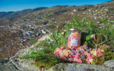 Visiter les Vosges